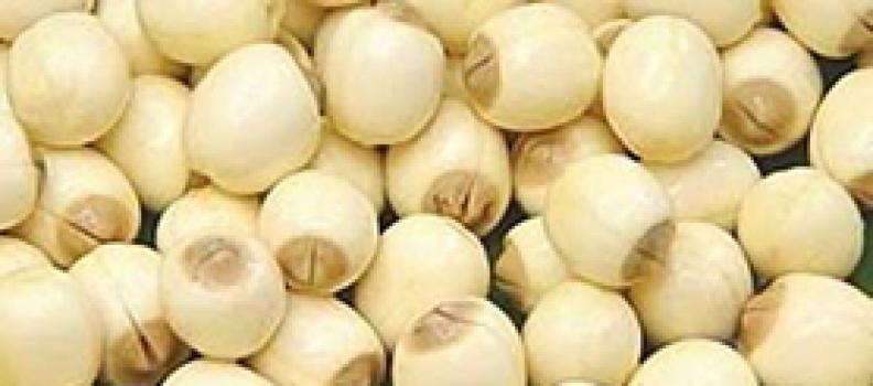 Chống ung thư với những loại quả, hạt
