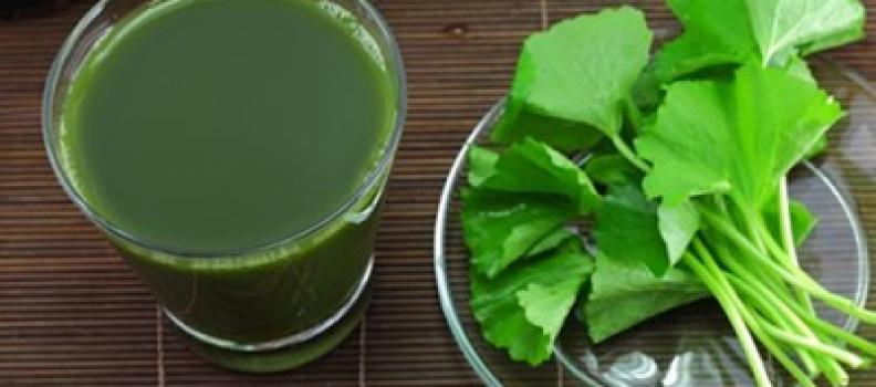 Thực phẩm giúp giải độc gan siêu hiệu quả